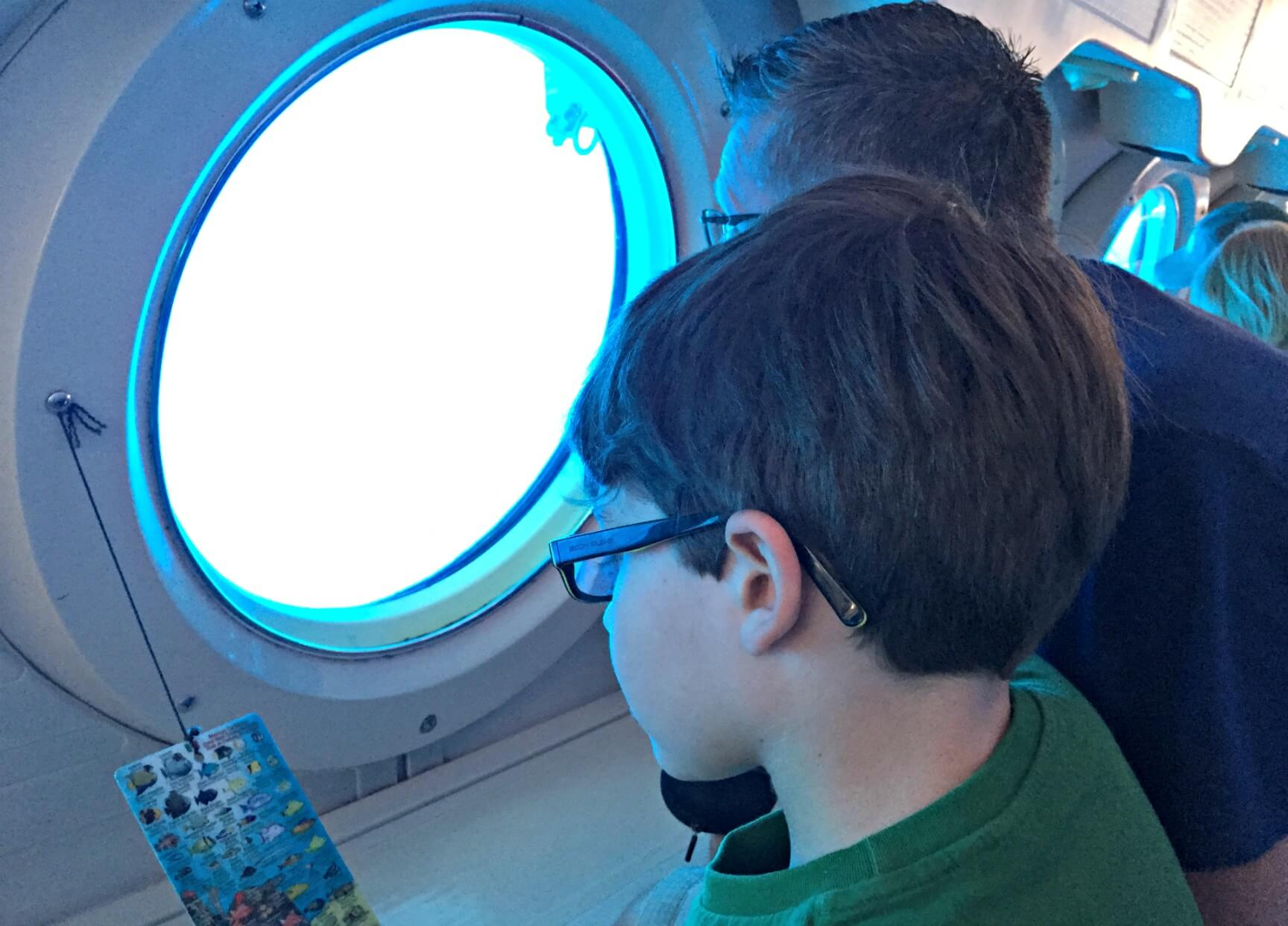 Looking for fish out the submarine window