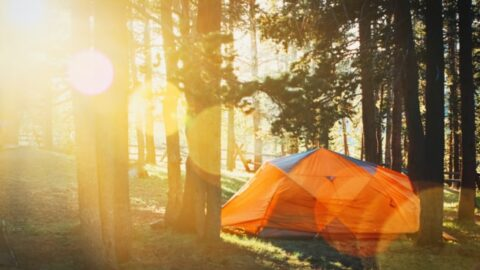 Camping Photo Scavenger Hunt